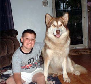 Hudons Malamutes - Alex with Ruby